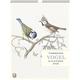 Thorbeckes Vogel-Kalender 2022, Thorbecke