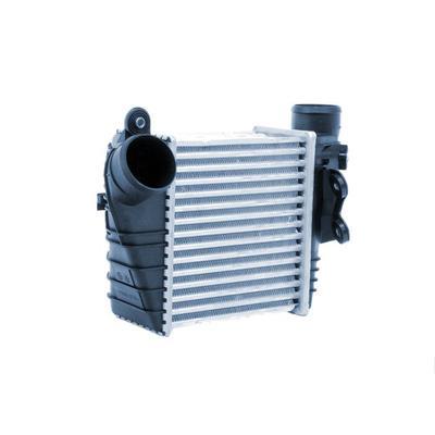Radiateur du moteur Frig Air S.p...