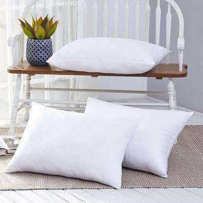 Micro Gel Fiber Sleep Pillow Set of Two Ivory, King, Ivory