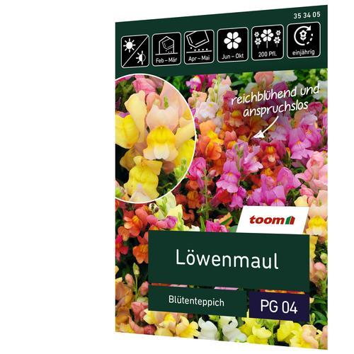 toom Löwenmaul 'Blütenteppich'