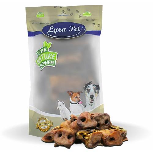 10 kg ® Schweinenasen - Lyra Pet