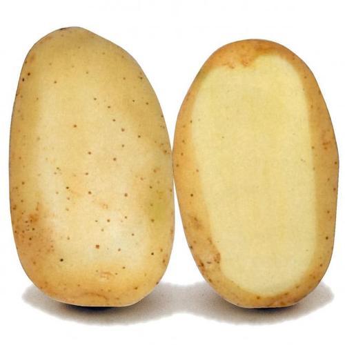 Kartoffel Sava, 5 kg