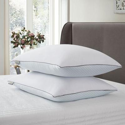 Summer Winter Jumbo Sleep Pillows White Set of Two, Set of Two, White