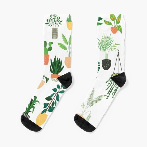Zimmerpflanzen 1 Socken