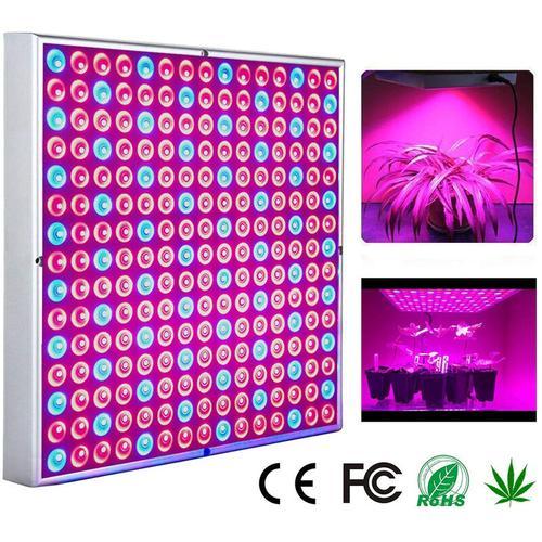 LED Pflanzenlampe 45W Pflanzenleuchte 225 LEDs fuer Gewaechshaus Red Blue Voll Spektrum