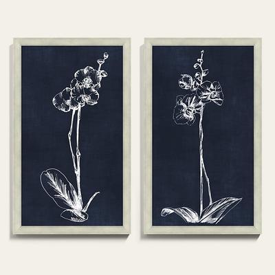 "White Orchid Art 20"" x 13"" - Ballard Designs"