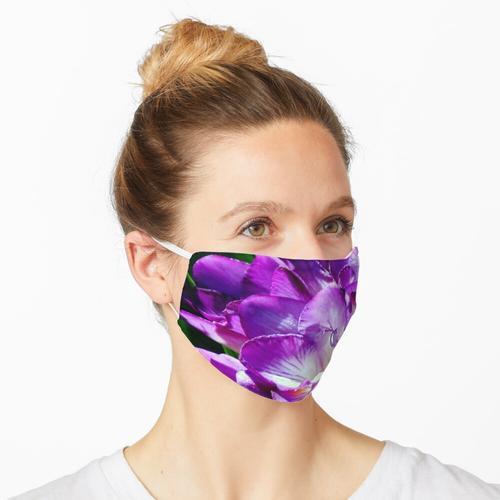 Royal Purple - Der Prinz von Freesien Maske