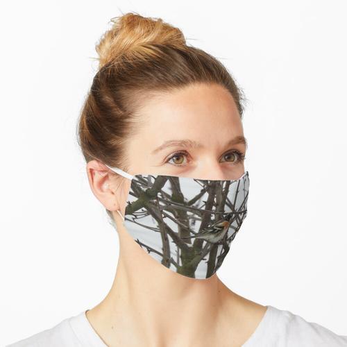 Buchfink im Winter Maske