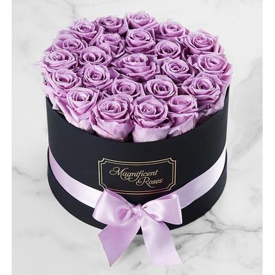 Magnificent Roses® Preserved Lavender Roses Magnificent Roses® Two Dozen Lavender by 1-800 Flowers