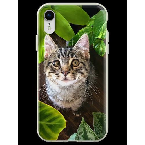Pflanze Kätzchen Flexible Hülle für iPhone XR