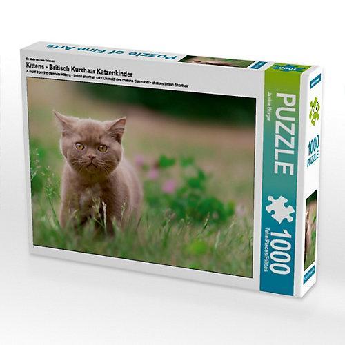Kittens - Britisch Kurzhaar Katzenkinder Foto-Puzzle Bild von Janina Bürger Puzzle