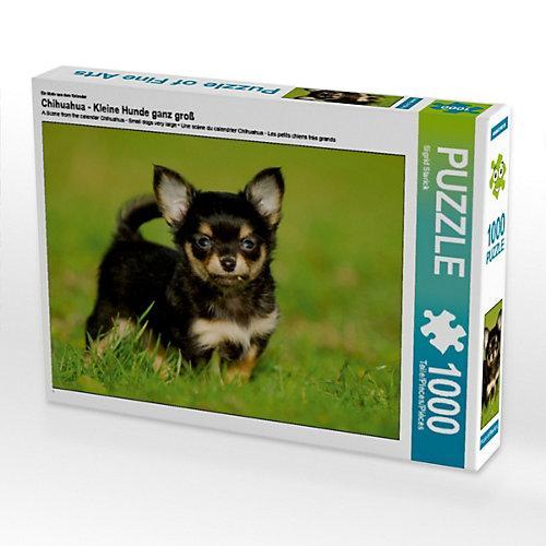Chihuahua - Kleine Hunde ganz groß Foto-Puzzle Bild von SiSta-Tierfoto Puzzle
