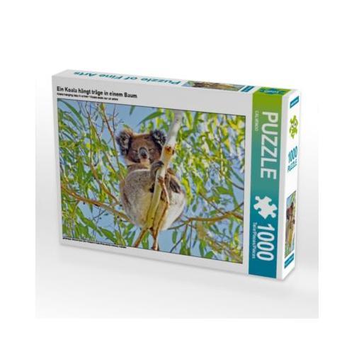 Ein Koala hängt träge in einem Baum Foto-Puzzle Bild von CALVENDO Verlag Puzzle