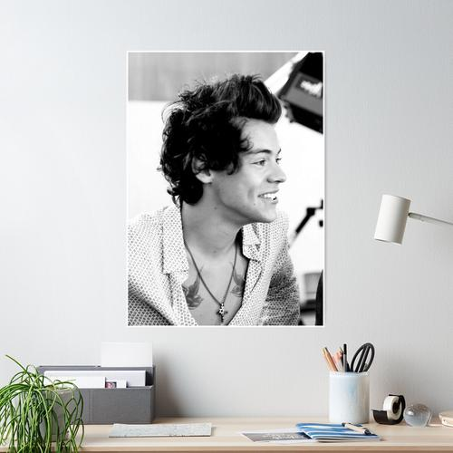 goodboy harry Poster