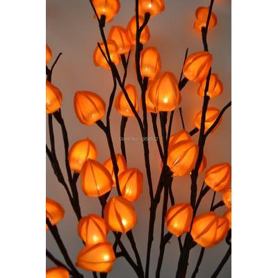 Branches de lanternes chinoises,...