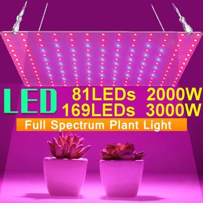 Lampe horticole de croissance d'...