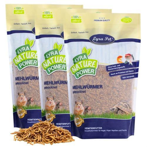 3 x 5 kg ® Mehlwürmer getrocknet - Lyra Pet