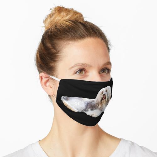 Havaneser Hund Maske