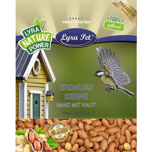 20 kg Lyra Pet® Erdnusskerne mit Haut HK Afrika
