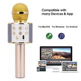 Microphone professionnel sans Bl...