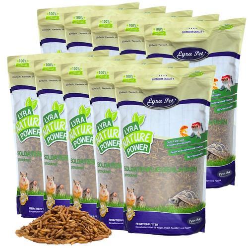 25 kg ® Soldatenfliegenlarven - Lyra Pet
