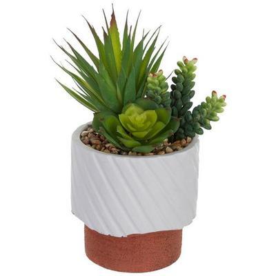 Flora Bunda Succulent Reverse Accent Decor