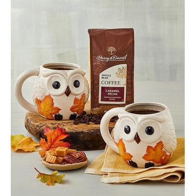 Fall Owl Mug Duo With Coffee