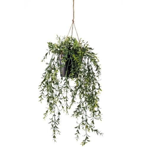 Emerald Kunstpflanze Buchsbaum Hängend in Topf 50 cm
