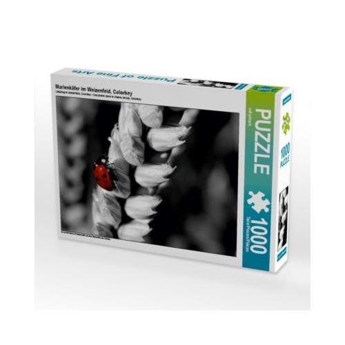 Marienkäfer im Weizenfeld, Colorkey Foto-Puzzle Bild von ropo13 Puzzle