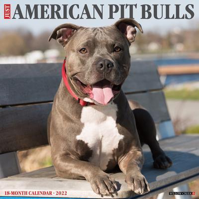 Willow Creek Press Just American Pit Bull Terriers 2022 Wall Calendar