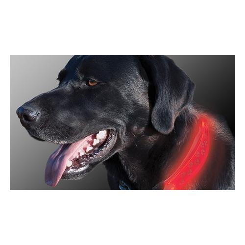 Hundehalsband-Aufsatz mit LED-Licht: 1