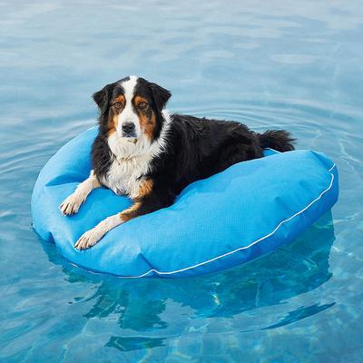 Dog Pool Float and Lounger - Tangerine , Large: 47 dia. - Frontgate