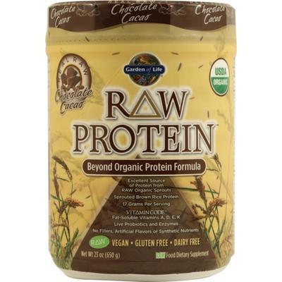 Garden of Life RAW Organic Protein Chocolate -- 23 oz - Vegan