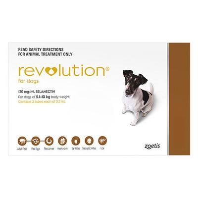 Revolution Small Dogs 10.1 - 20lbs (Brown) 6 Doses