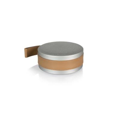 Tivoli Audio - Andiamo Portable Bluetooth Speaker - Silver/Leather